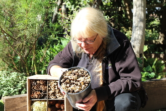 Cath Price bug hotel