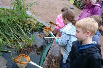 Pond dipping, Shrewsbury