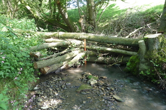 Slow the Flow project Woody debris dam in a Corve Dale brook