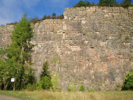 Rock face at Llanymynech