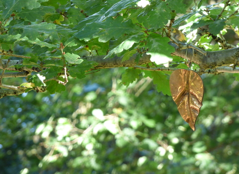 Memorial tree copper leaf