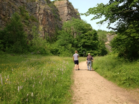A summer walk at Llanymynech Rocks